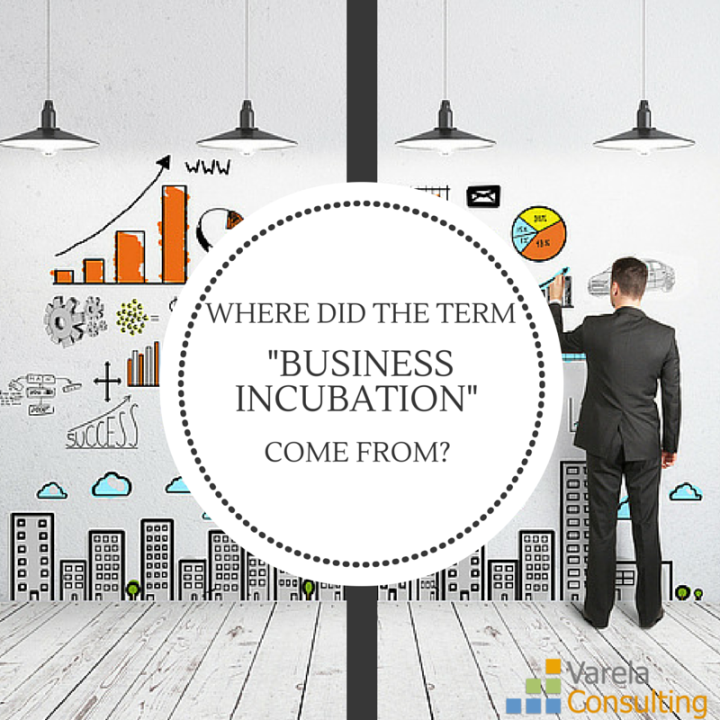 VC Blog - Business Incub come from-